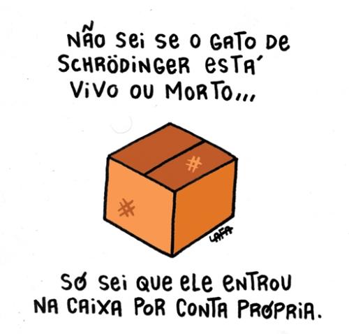 cartum---gatos-e-caixas