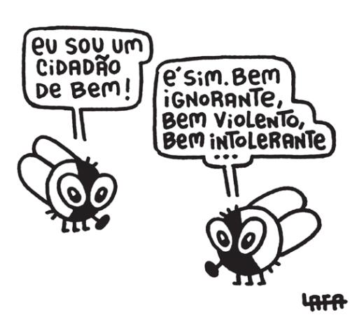 moscas---cidadao.jpg